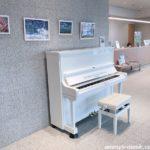 幕張ベイパーク クロスポートに白いピアノがやって来た!